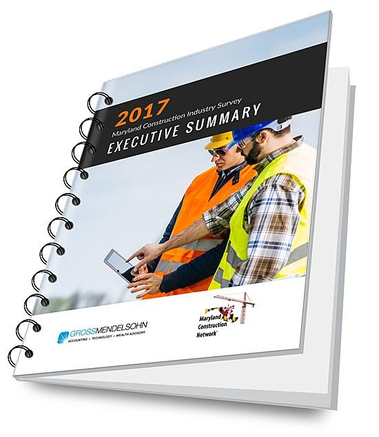 2017 Construction Survey Executive Summary - 3D image.jpg