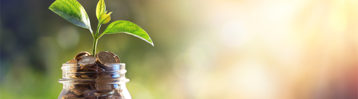Growing and securing your nonprofit with an endowment