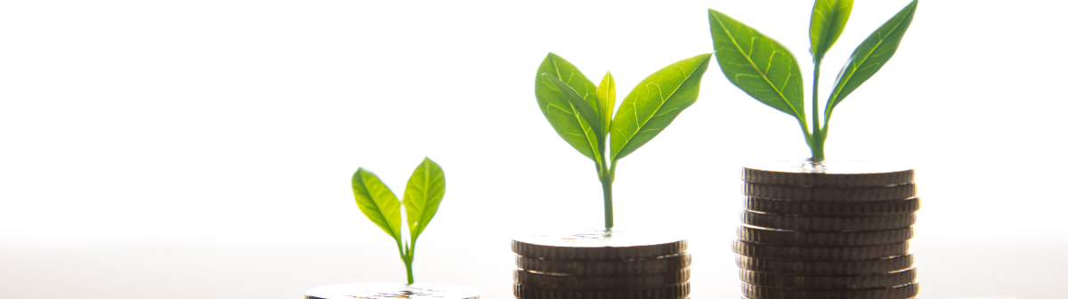 endowment-fund-growth